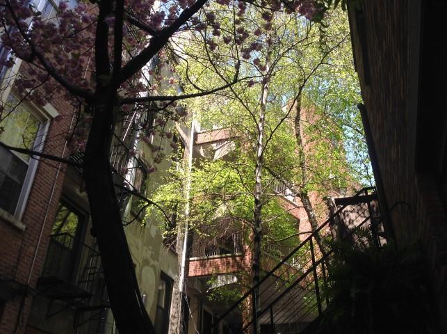 Kunstrejse-New-York-3