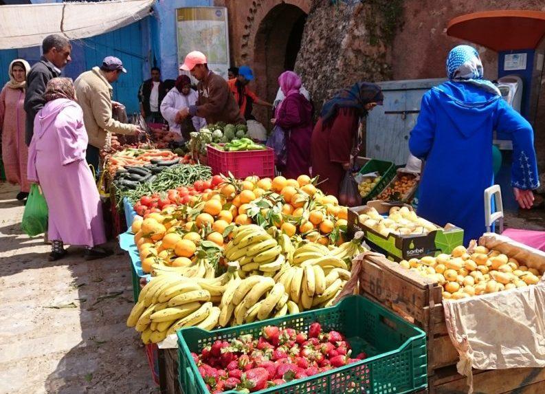 Malekursus_marokko_Kreativt_netvaerk-5