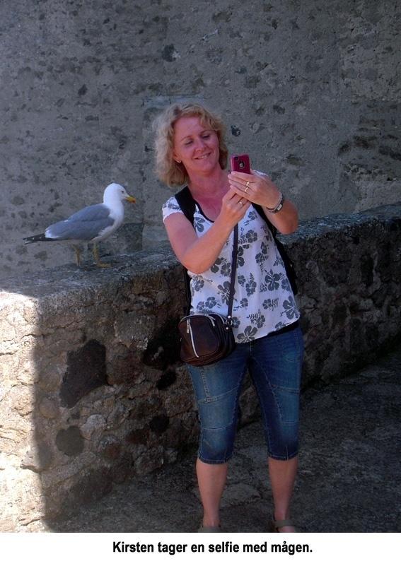 Akvarelkursus Ischia selfie med maage
