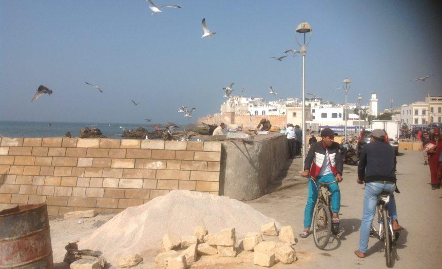 Malekursus Marokko 2017 (12)