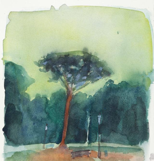 Akvarelkursus Rom Anita Viola Nielsen (9)