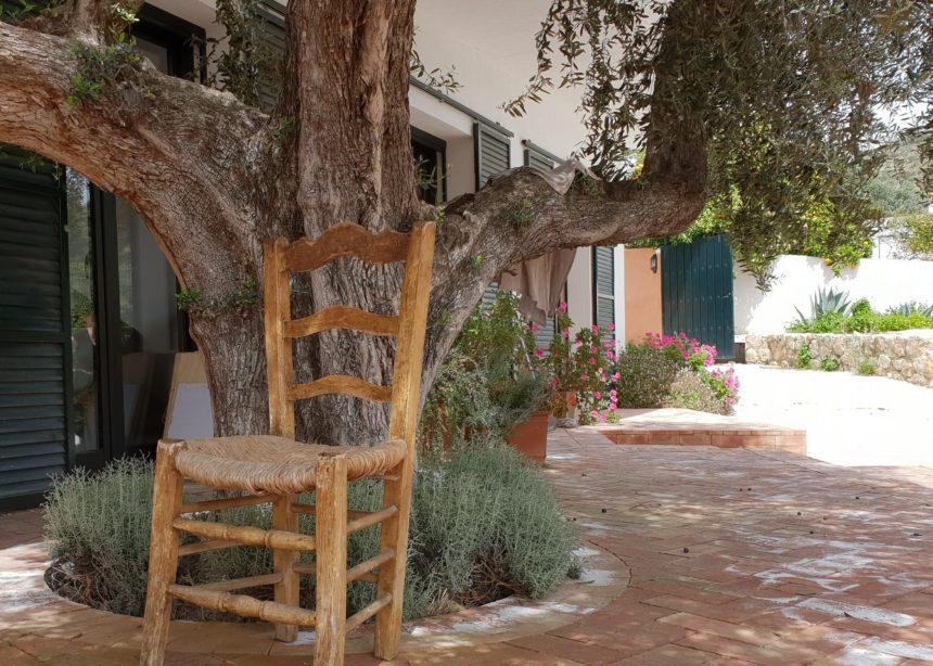 Malekursus Andalusien Kreativt Netværk (11)