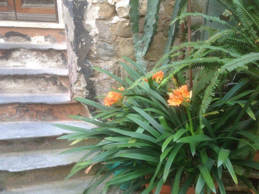 Malerkursus Cinque Terre 010